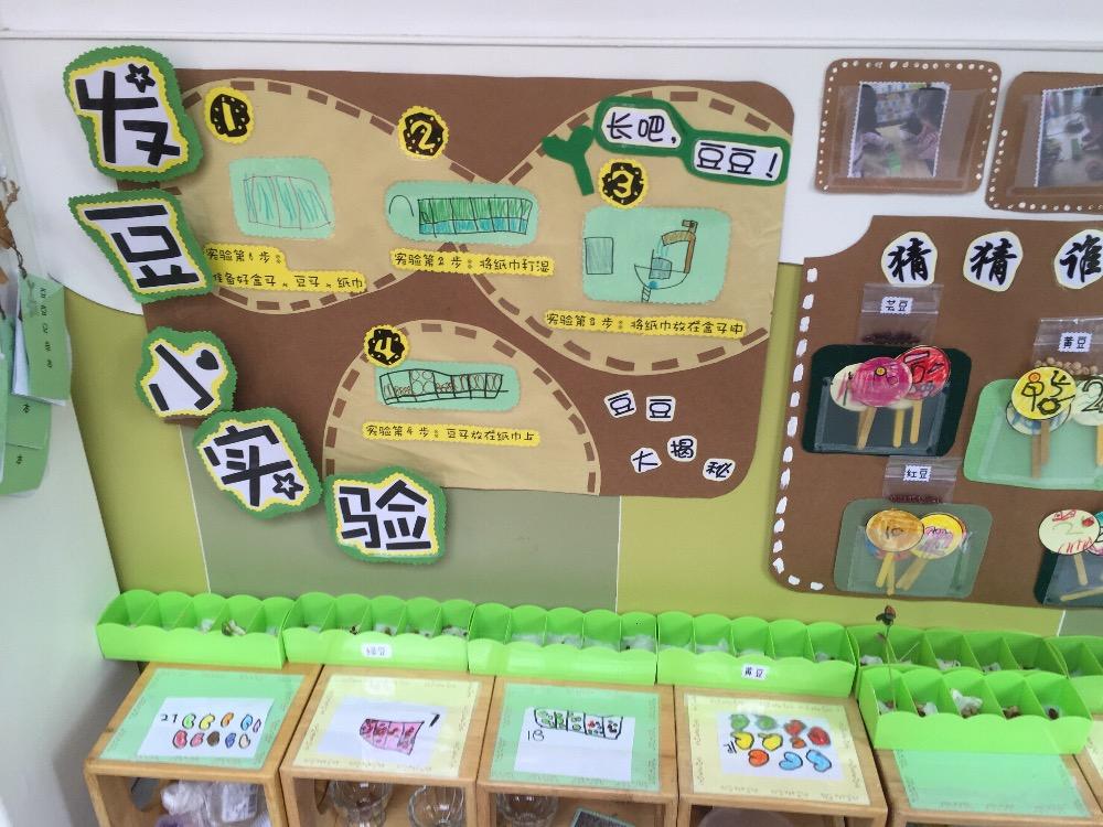 小小环境,大大智慧__幼儿园盥洗室环境创设_幼儿园_师